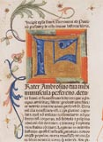 Detail of an initial from the work Biblia Latina (Norimberg 1478) - exhibition SNM