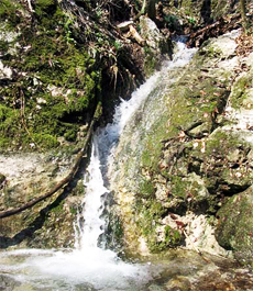 The Occasional Waterfall in The Male Karpaty Mts.